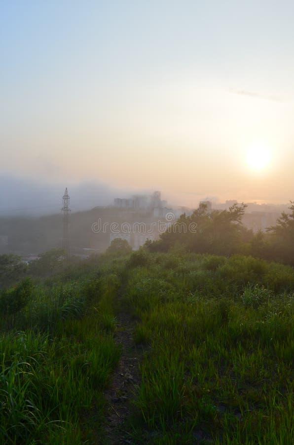 在一条小径的早晨雾在城市 库存照片