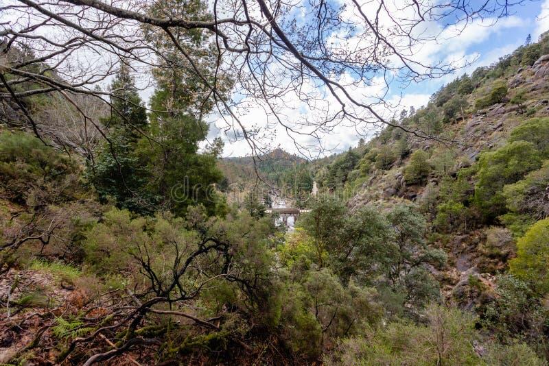 在一条小河的小山桥梁从佩内达Geres国立公园,在葡萄牙北部 免版税库存照片
