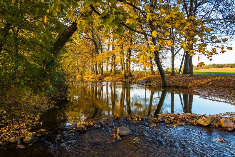 在一条小河的秋天反射,在农村弗雷德里克县, Marylan 库存照片