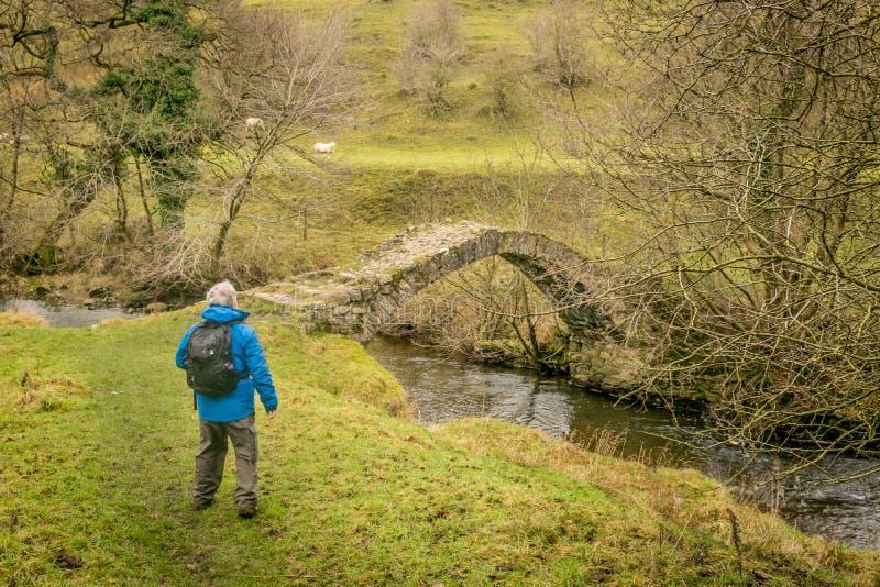 在一条小的小河的小石脚桥梁 享受看法的远足者 免版税库存照片