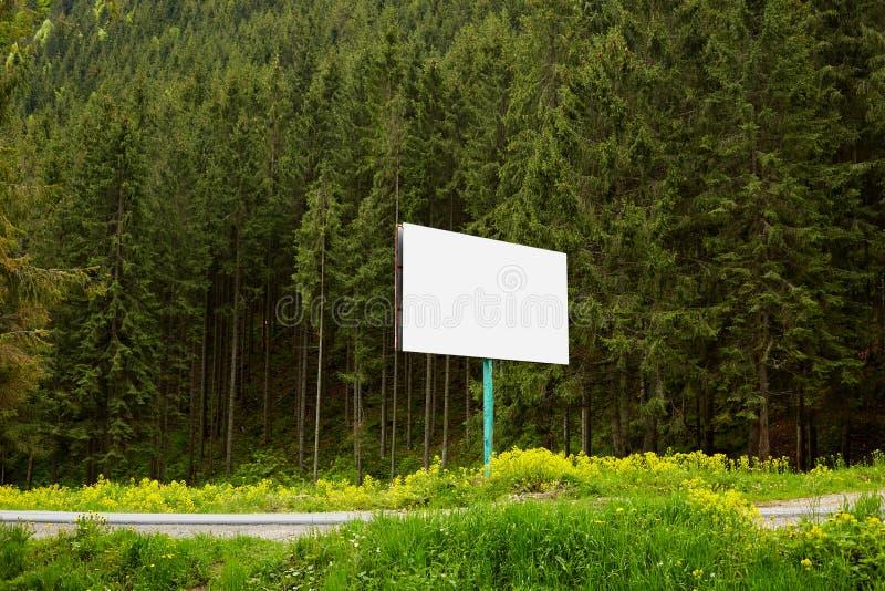 在一条小路安置的空白的巨大的广告牌的室外图象在森林附近,那里是生长在山小山的许多松树, 库存图片