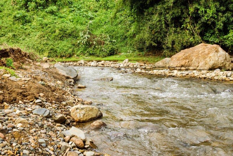 在一条山河的看法有雨林的石银行的 免版税库存照片