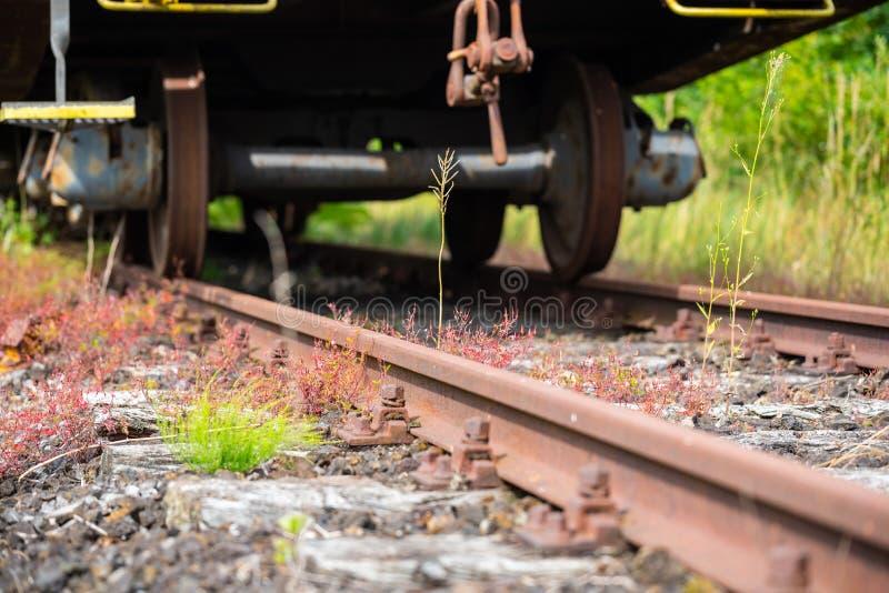 在一条废弃的铁路的一个老被忘记的火车支架 库存照片