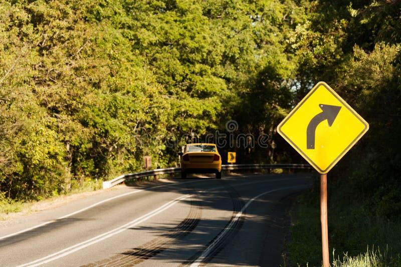 在一条弯曲的路的车祸有刹车痕的 皇族释放例证