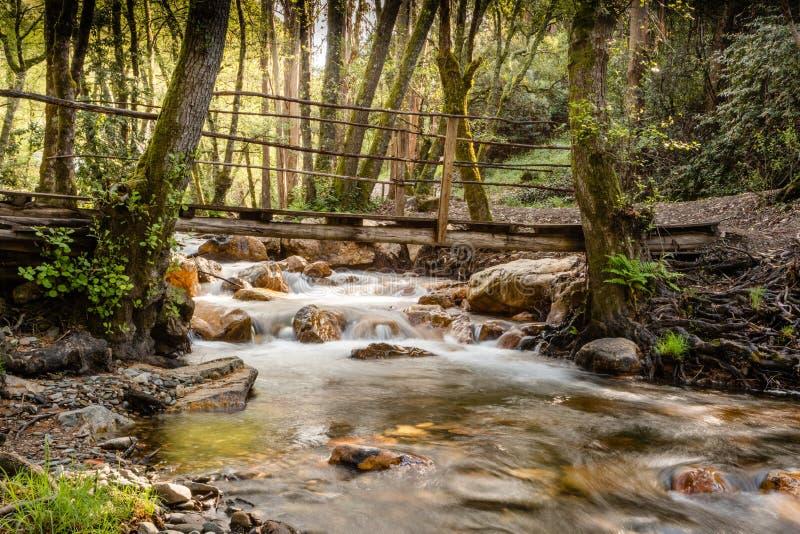 在一条树木繁茂的小河在figueiro dos vinhos,莱利亚,葡萄牙的桥梁 免版税库存图片