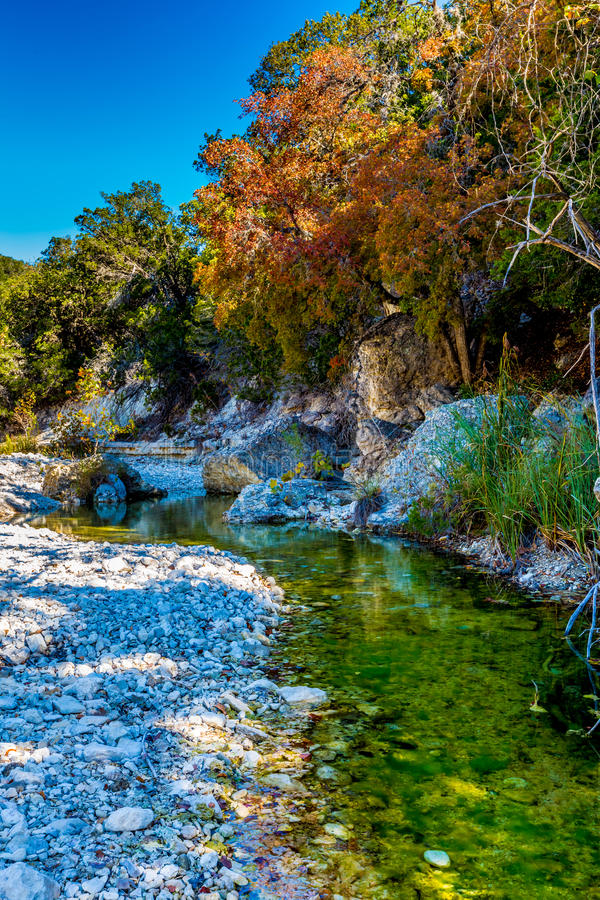 在一条清楚的岩石小河的秋叶与在失去的槭树的槭树 免版税图库摄影