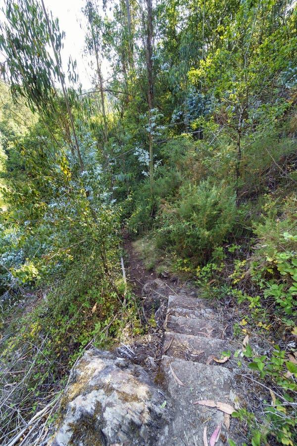 在一条狭窄的道路的老石台阶在山坡co中间 免版税库存图片