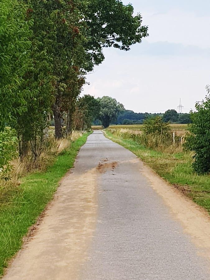 在一条脚道路的看法在的培养的领域中间在德国西北部 库存图片
