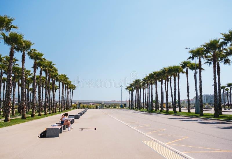在一条街道上的棕榈树有女孩的坐长凳 免版税库存照片