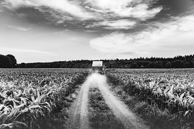 在一条路的一台拖拉机在麦地之间 E 库存照片