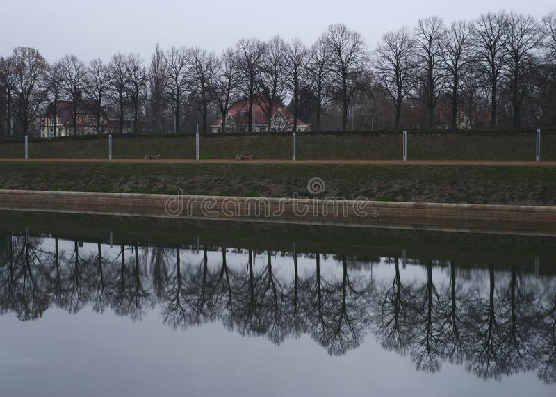 在一条附近的河反映的胡同的树 免版税库存图片