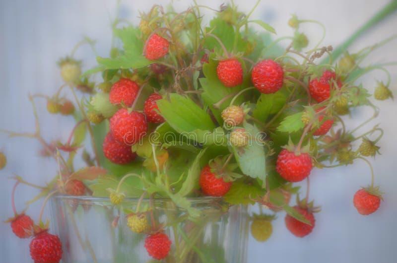 在一杯的新鲜的草莓水 免版税库存照片