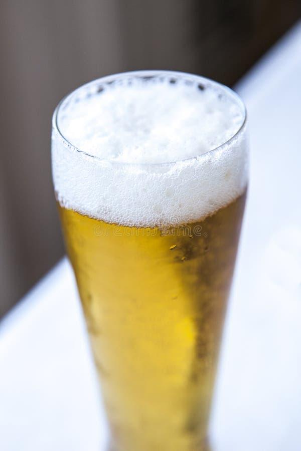 在一杯的泡沫似的头啤酒 库存图片