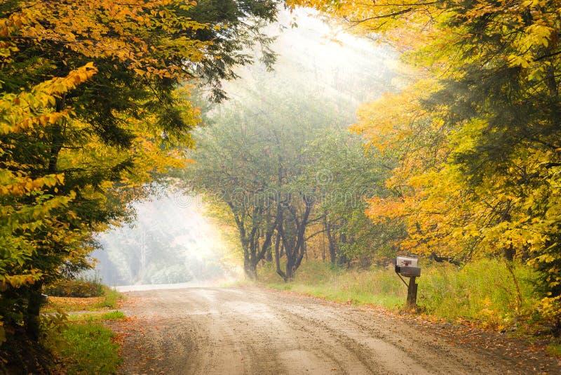 在一根杆的邮箱在秋叶期间的一条土路一边 库存照片