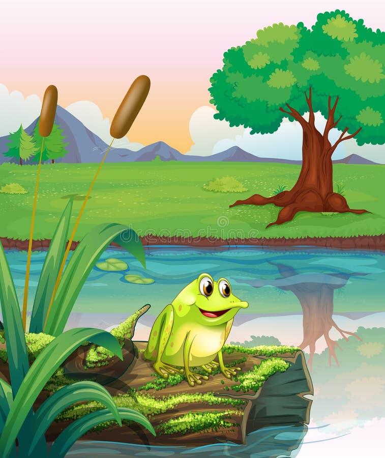 在一根树干上的一只青蛙与海藻 向量例证