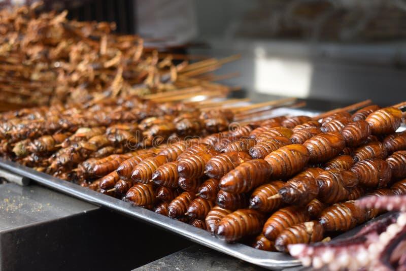 在一根棍子的昆虫在一个地方中国市场上在北京 图库摄影