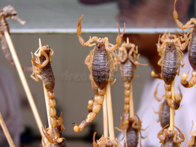 在一根棍子的蝎子在街市上 纤巧,中国的异乎寻常的食物 免版税库存图片