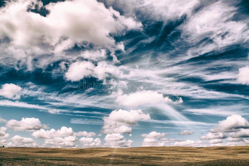 在一棕色meado的美丽的天空蔚蓝在秋天 美好的秋天颜色 免版税图库摄影