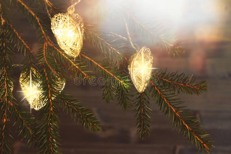 在一棵圣诞树的分支的圣诞灯在黑暗的木背景的 免版税库存图片