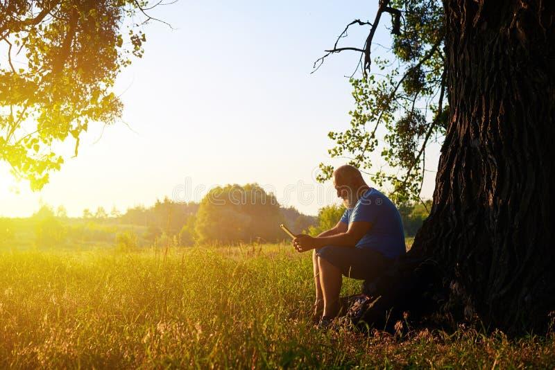 在一棵树下的年迈的人在日落背景在领域的 免版税库存图片