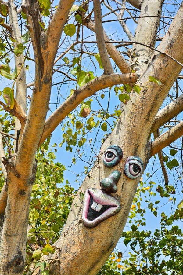 在一棵树的人工制品与眼睛、鼻子和嘴唇在庭院里 库存图片