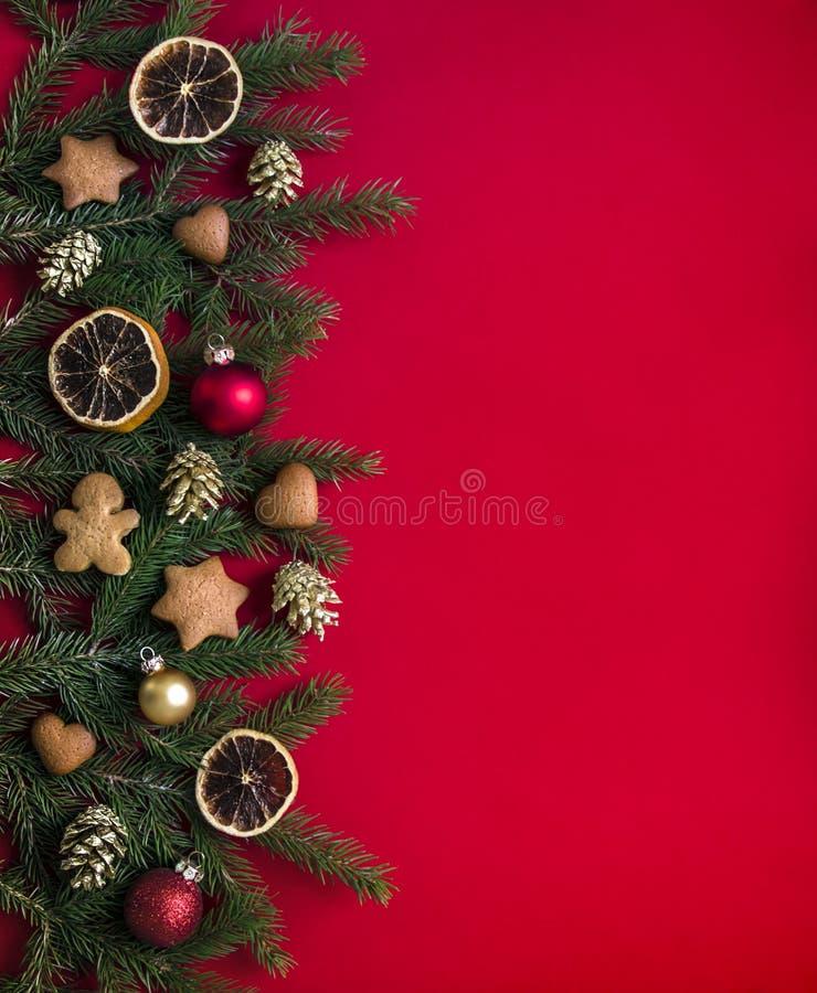 在一棵红色背景绿色云杉分支装饰用圣诞节姜饼、金黄锥体、桔子和球 免版税库存图片