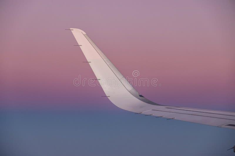 在一次航空器飞行的翼的太阳在日出的 库存图片