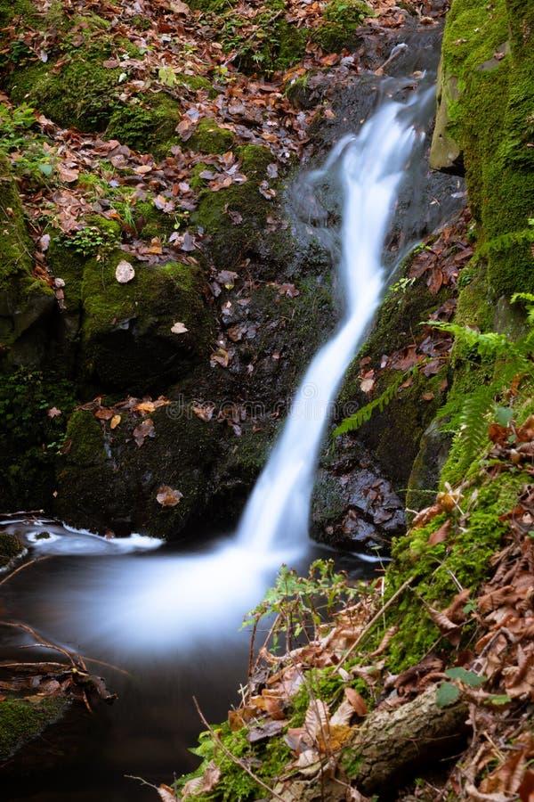 在一次远足的小暗藏的瀑布通过森林 库存照片