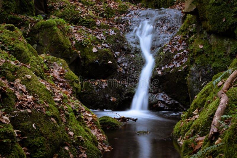 在一次远足的小暗藏的瀑布通过森林 库存图片
