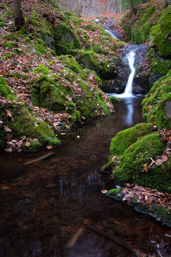 在一次远足的小暗藏的瀑布通过森林 免版税图库摄影