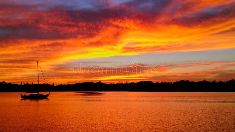 在一点多沼泽的支流的日落坦帕湾的,圣彼得堡,佛罗里达 免版税图库摄影
