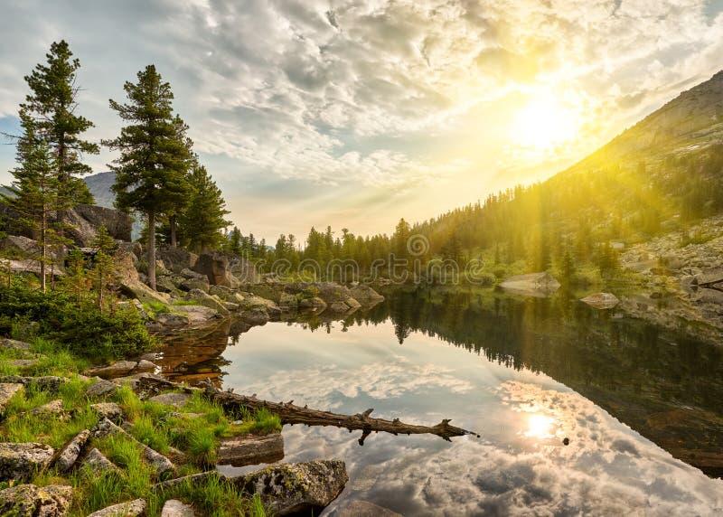 在一点湖的夏天早晨 免版税库存照片