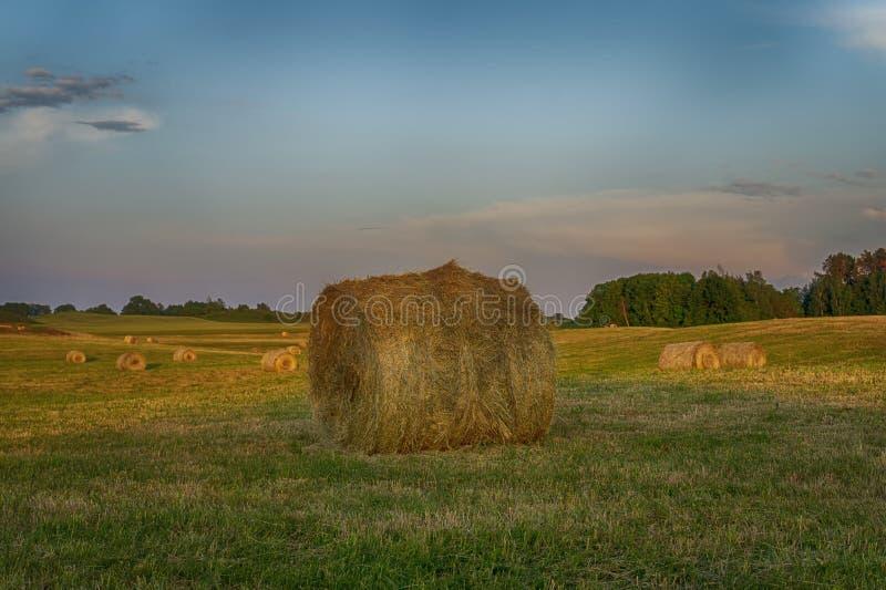 在一片农田的大圆的干草捆在日落 免版税库存图片