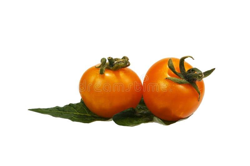 在一片绿色叶子的两个黄色蕃茄 库存图片
