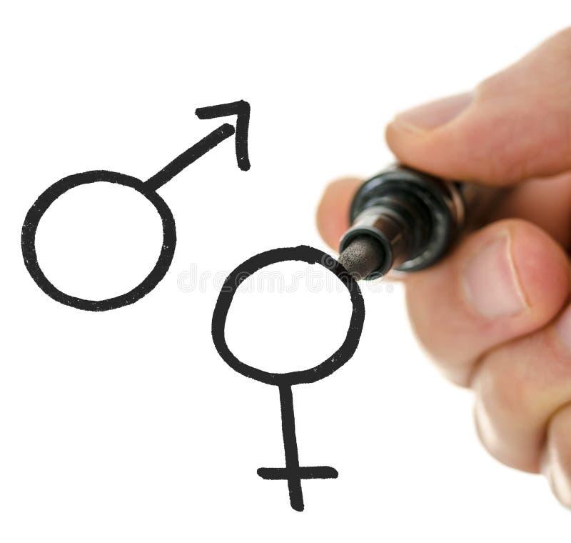 在一真正whiteboard的男性手图画性别标志 库存照片