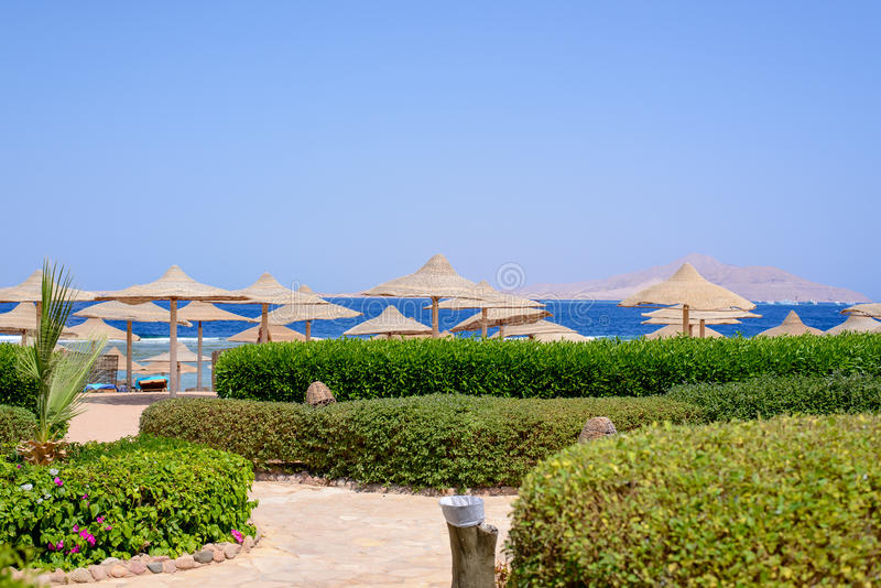 在一种热带手段的盖的沙滩伞 免版税库存照片