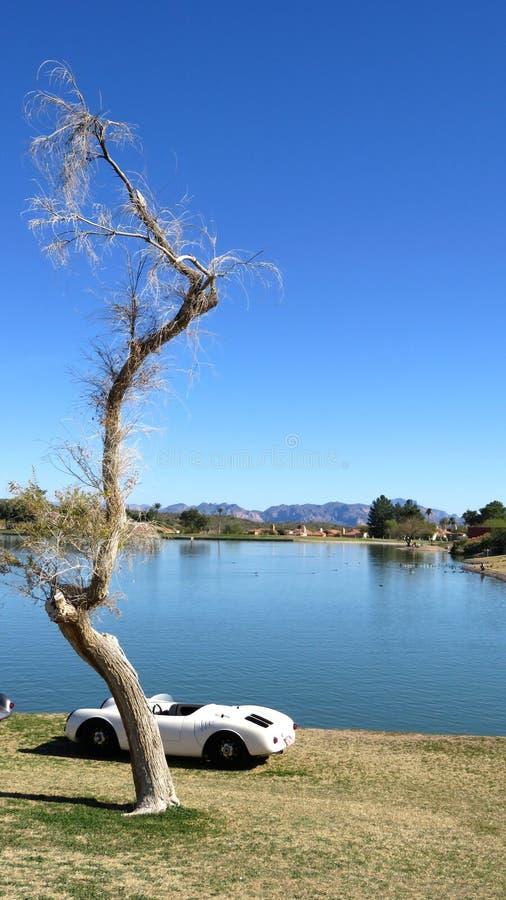 在一辆白色敞篷车前面的小束的树在湖岸 免版税图库摄影