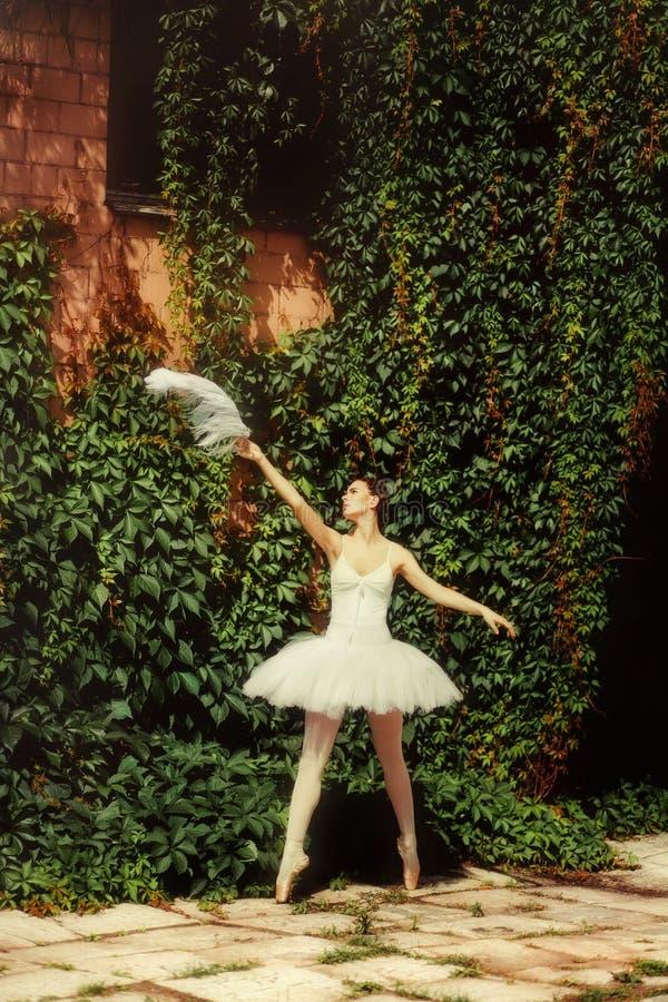 在一件白色礼服的妇女跳芭蕾舞者在自然跳舞 库存照片