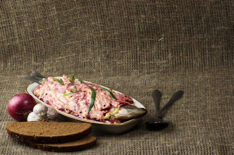 在一件皮大衣下的沙拉鲱鱼在backgro的一张木桌上 免版税库存照片
