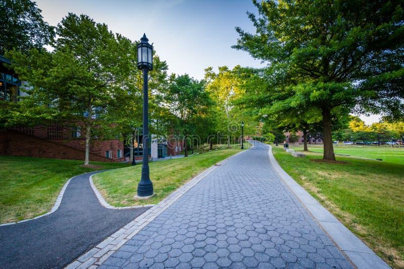 在三一学院的走道,在哈特福德,康涅狄格 库存图片
