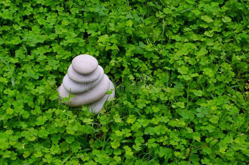 在三叶草的小卵石 库存图片