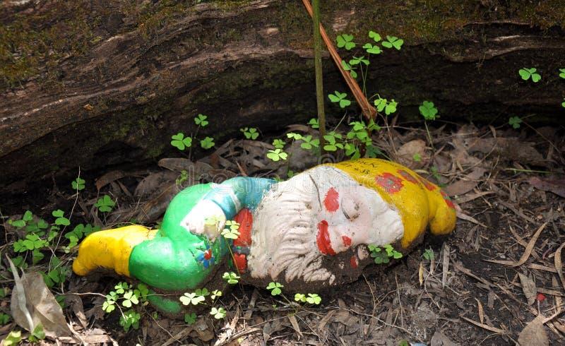 在三叶草的睡觉地精:gnomesville,西澳州 库存图片图片