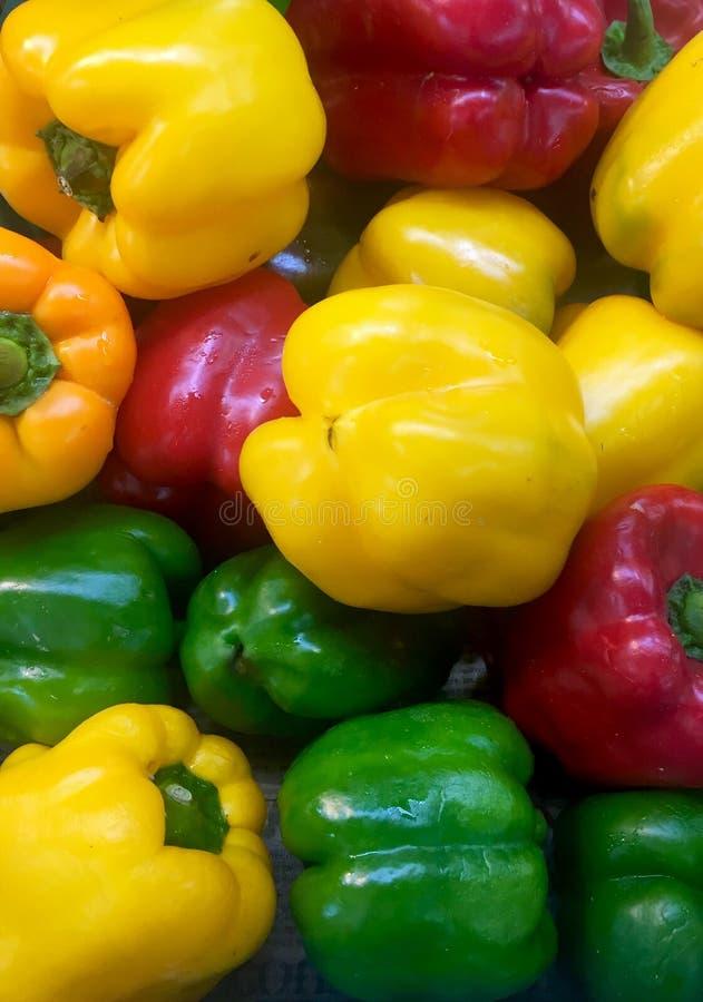 在三种颜色的辣椒的果实 库存图片