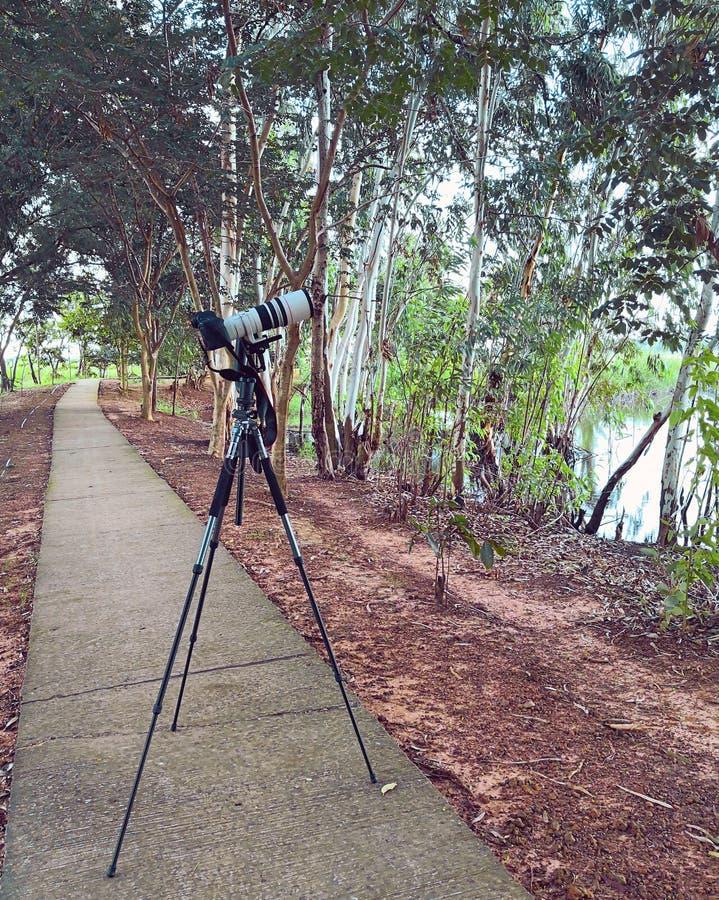 在三脚架的照相机 免版税库存照片