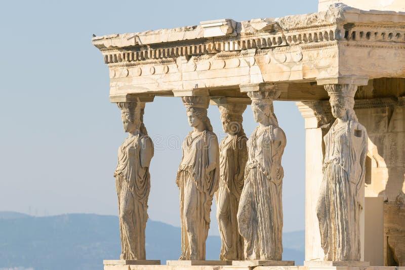 在上城的女象柱雕象在希腊 库存图片