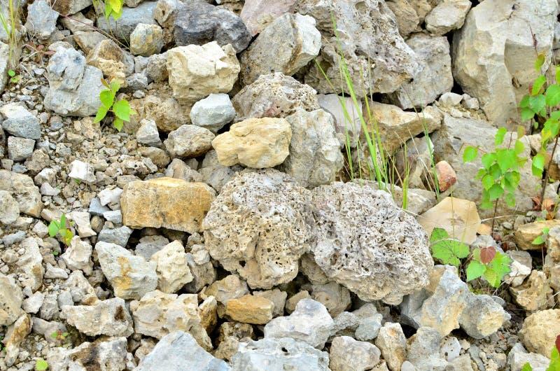 在上面曝露的石灰石的自然石白云岩 图库摄影