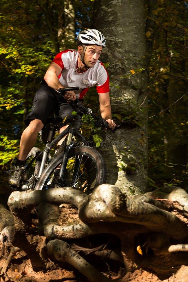 在下坡a的Mountainbiker 免版税库存照片