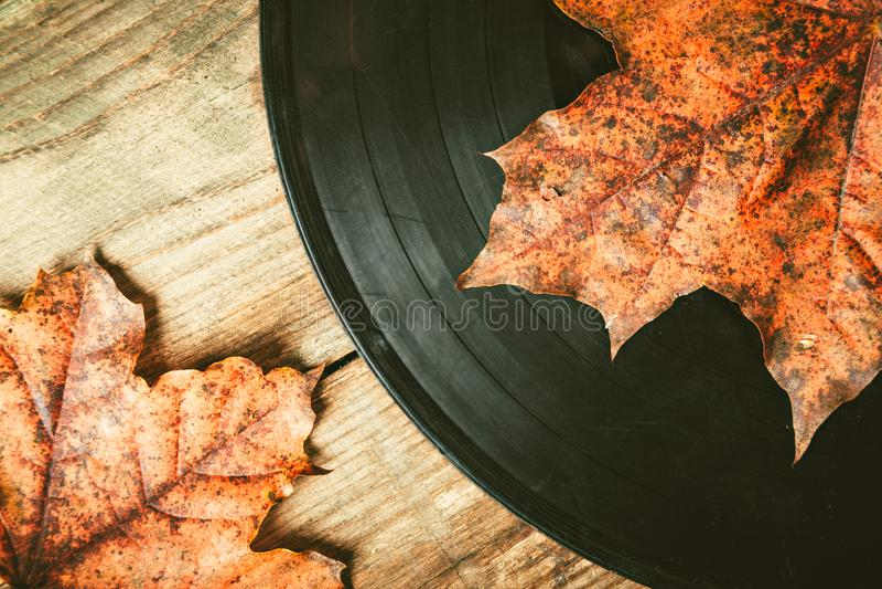 在下落的秋天叶子的Gramplastine 免版税图库摄影