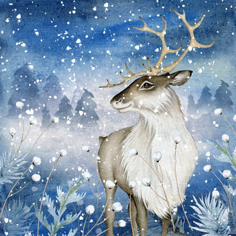 在不可思议的冬天背景的水彩驯鹿 向量例证