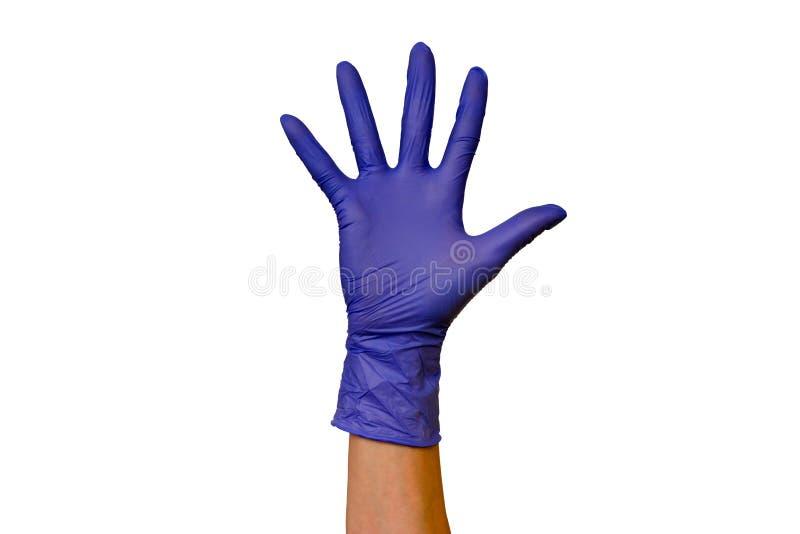 在不同颜色isolat橡胶手套的男性或女性手  免版税库存照片